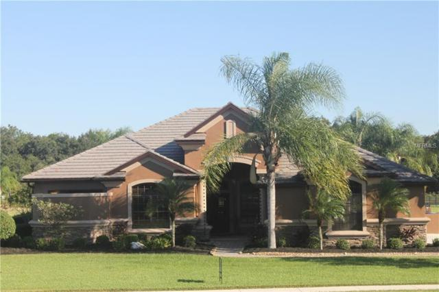 3710 Twin Rivers Trail, Parrish, FL 34219 (MLS #A4417184) :: The Duncan Duo Team