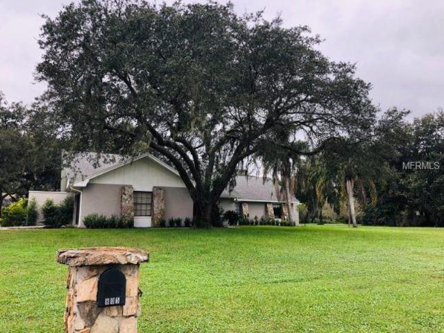 805 Cottage Hill Way, Brandon, FL 33511 (MLS #A4419152) :: The Duncan Duo Team