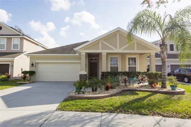8242 Nectar Ridge Court, Odessa, FL 33556 (MLS #A4426622) :: Team Bohannon Keller Williams, Tampa Properties
