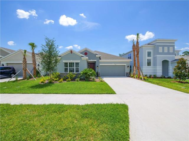 7083 Scarlet Cedar Drive, Wesley Chapel, FL 33545 (MLS #A4432379) :: The Brenda Wade Team