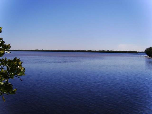 586 Bayshore Drive, Ellenton, FL 34222 (MLS #A4432711) :: Medway Realty
