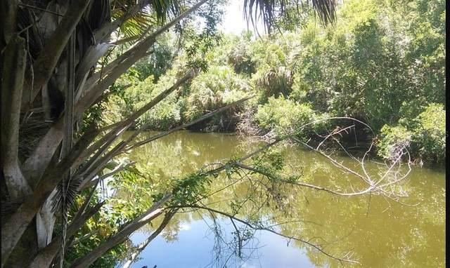 Basket Street, North Port, FL 34288 (MLS #A4497208) :: Armel Real Estate