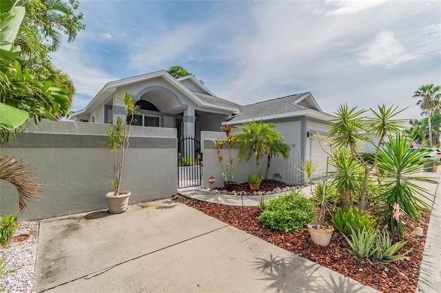 11205 Veranda Court #11205, Bradenton, FL 34209 (MLS #A4508330) :: Zarghami Group