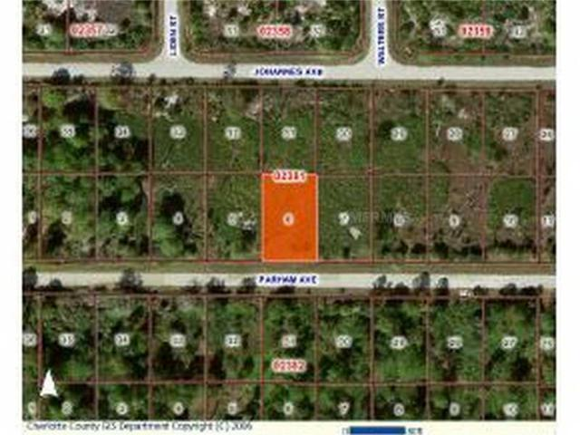 13100 Parham Avenue, Port Charlotte, FL 33953 (MLS #C7044168) :: Godwin Realty Group