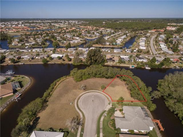 Lamar Court, North Port, FL 34287 (MLS #C7235399) :: Medway Realty
