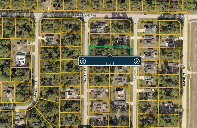 Hegira Street, North Port, FL 34286 (MLS #C7243970) :: Griffin Group