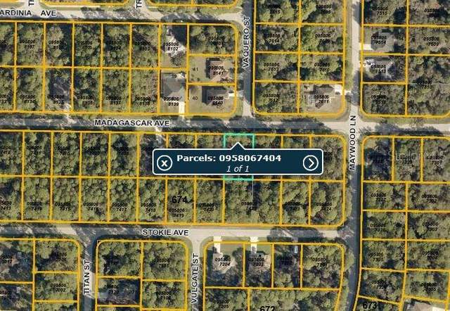 Madagascar Avenue, North Port, FL 34286 (MLS #C7244211) :: Griffin Group