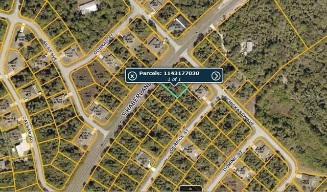 S Haberland Boulevard, North Port, FL 34288 (MLS #C7244224) :: Griffin Group