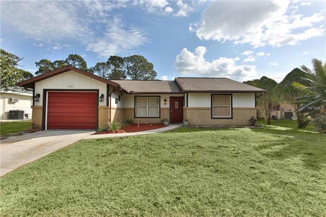 2426 Haven Street, Port Charlotte, FL 33948 (MLS #C7246621) :: Premium Properties Real Estate Services