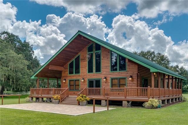 26005 Harrison Road, Myakka City, FL 34251 (MLS #C7405242) :: Mark and Joni Coulter | Better Homes and Gardens