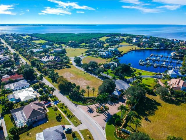 4400 Grassy Point Boulevard, Port Charlotte, FL 33952 (MLS #C7411952) :: The Duncan Duo Team