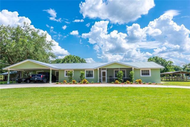 5347 SE Hagen Street, Arcadia, FL 34266 (MLS #C7415519) :: Team Bohannon Keller Williams, Tampa Properties