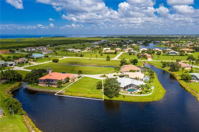 24099 Potosi Court, Punta Gorda, FL 33955 (MLS #C7433068) :: Zarghami Group