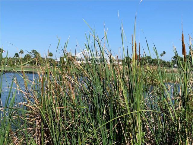 9800 Eagle Preserve Drive, Englewood, FL 34224 (MLS #D5918210) :: Medway Realty
