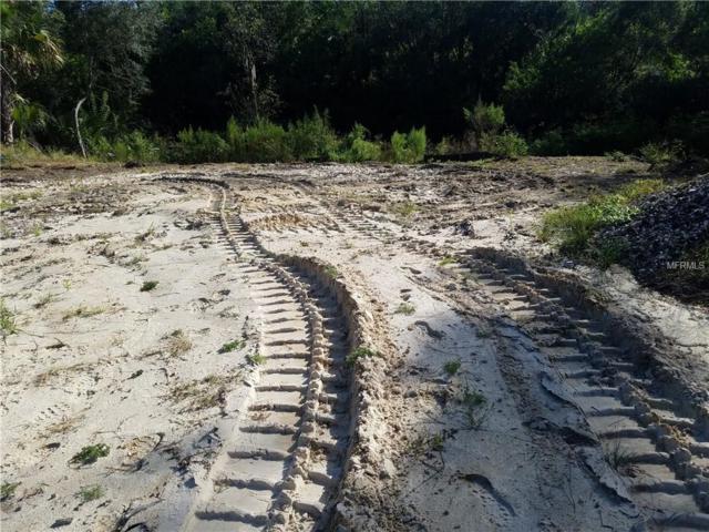 Shrimp Lane, North Port, FL 34286 (MLS #D6102915) :: Griffin Group