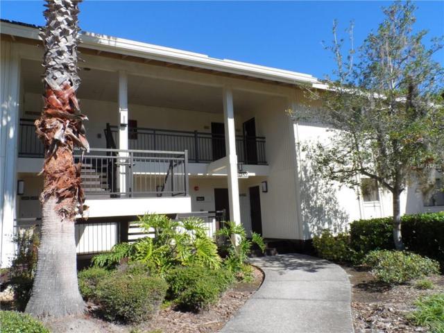 29129 Bay Hollow Drive #3208, Wesley Chapel, FL 33543 (MLS #E2203594) :: The Duncan Duo & Associates