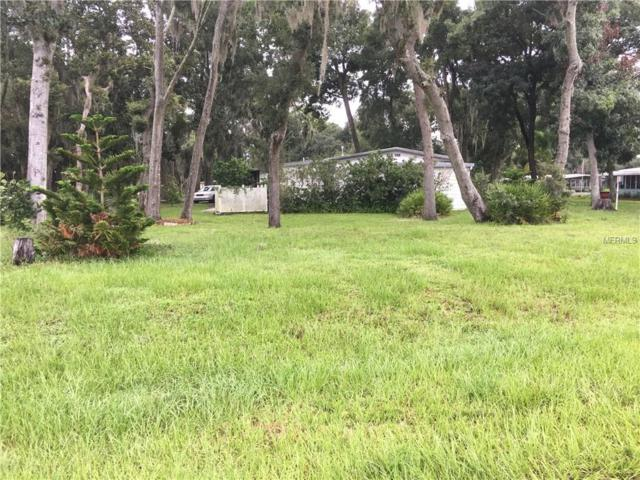 64 Robin, Wildwood, FL 34785 (MLS #G4828444) :: The Duncan Duo Team
