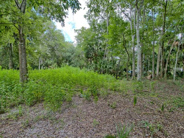 649 S Crabtree Point, Inverness, FL 34450 (MLS #G4845496) :: The Duncan Duo Team