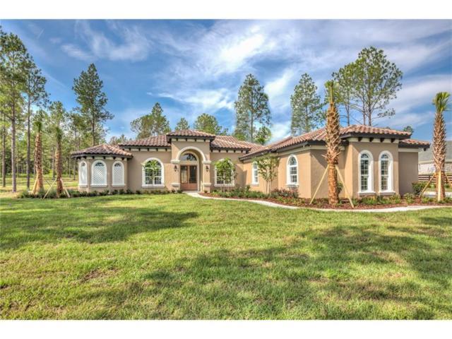 236 Two Lakes Lane, Eustis, FL 32726 (MLS #G4847777) :: Griffin Group
