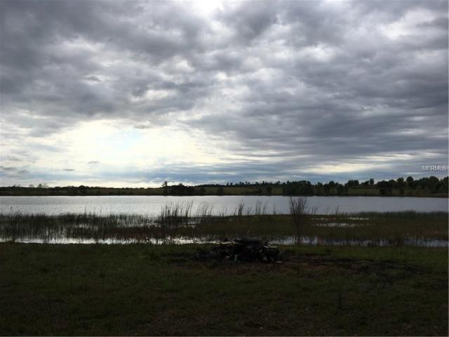 Lake Emma Road, Groveland, FL 34736 (MLS #G4854553) :: Cartwright Realty