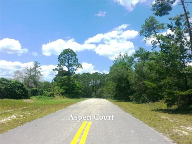 Aspen Court, Eustis, FL 32736 (MLS #G5001712) :: The Duncan Duo Team