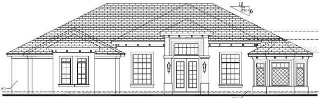 244 Two Lakes Lane, Eustis, FL 32726 (MLS #G5006554) :: Florida Real Estate Sellers at Keller Williams Realty