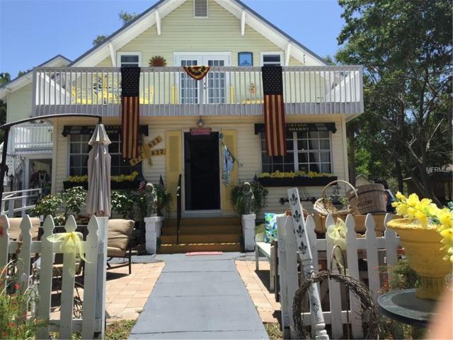 822 N Donnelly Street, Mount Dora, FL 32757 (MLS #G5007392) :: Premium Properties Real Estate Services
