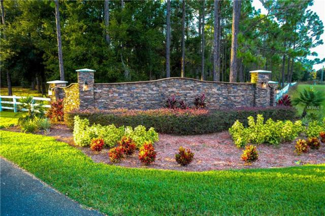 LOT 1 Clearwater Way, Groveland, FL 34736 (MLS #G5008058) :: Mark and Joni Coulter | Better Homes and Gardens