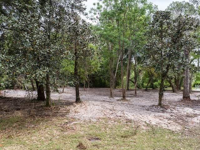 1143 Elysium Boulevard, Mount Dora, FL 32757 (MLS #G5013003) :: BuySellLiveFlorida.com
