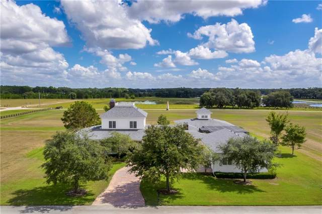 20514 Grass Roots Road, Groveland, FL 34736 (MLS #G5014224) :: Key Classic Realty