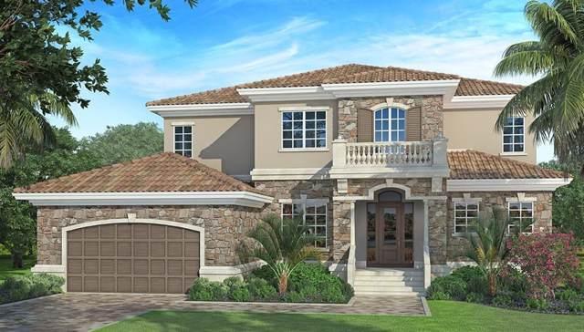 315 Two Lakes Lane, Eustis, FL 32726 (MLS #G5016128) :: Florida Real Estate Sellers at Keller Williams Realty