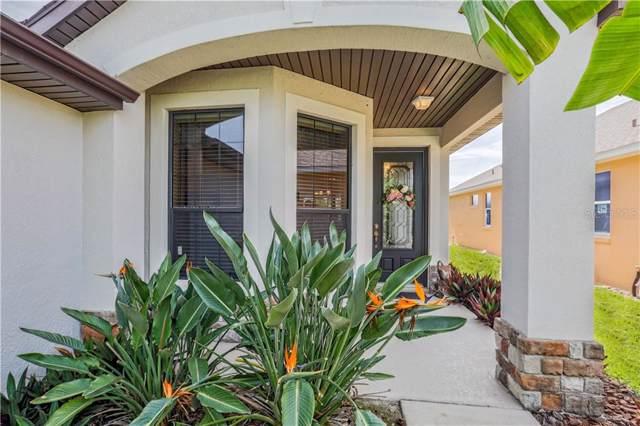 8870 Beacon Hill Avenue, Mount Dora, FL 32757 (MLS #G5019548) :: Cartwright Realty