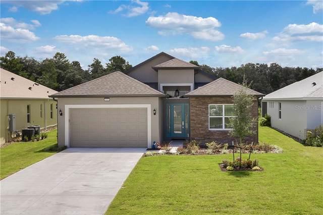 8484 Bridgeport Bay Circle, Mount Dora, FL 32757 (MLS #G5019675) :: Armel Real Estate