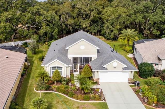 8045 Waterbury Way, Mount Dora, FL 32757 (MLS #G5025763) :: Cartwright Realty
