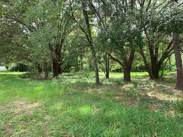 Se 10Th Place Place, Ocala, FL 34471 (MLS #G5029889) :: Rabell Realty Group