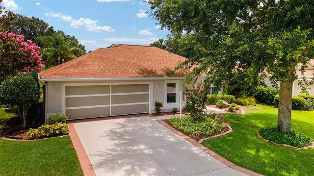 17035 SE 79TH CLEARVIEW Avenue, The Villages, FL 32162 (MLS #G5044365) :: Realty Executives
