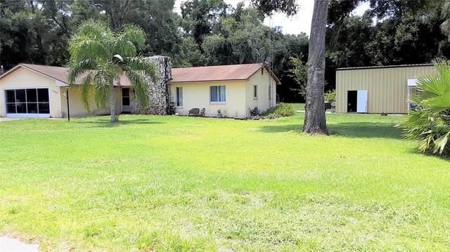 2788 County Road 503, Wildwood, FL 34785 (MLS #G5044508) :: Everlane Realty