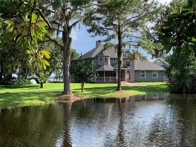 11802 Lizard Lane, Umatilla, FL 32784 (MLS #G5044771) :: Everlane Realty