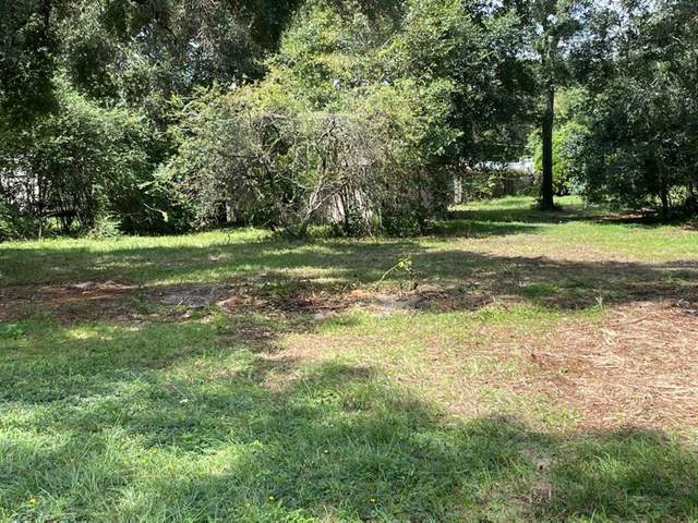 1255 Spring Lake Road, Fruitland Park, FL 34731 (MLS #G5044822) :: RE/MAX Elite Realty