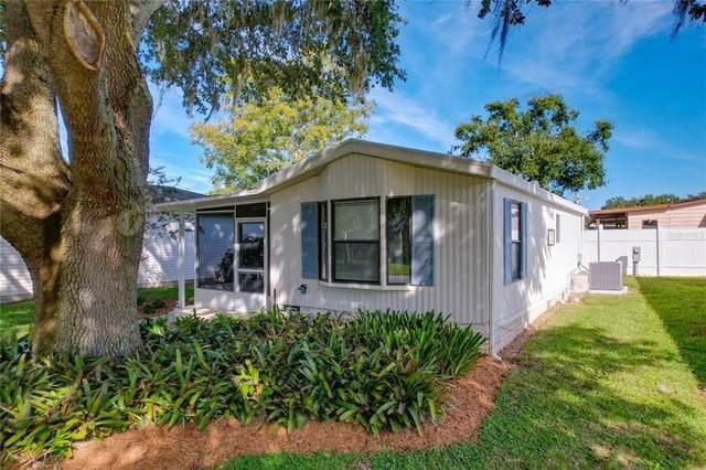615 NE Cottage Park Lane, Leesburg, FL 34748 (MLS #G5047360) :: Bustamante Real Estate