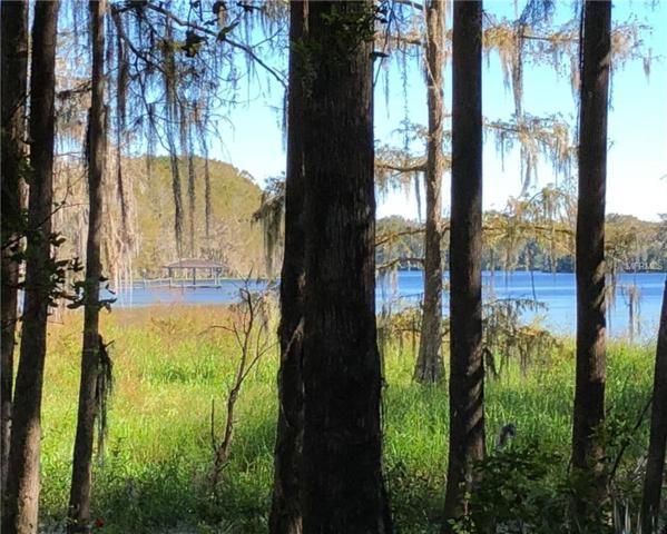 9446 E Gobbler Drive, Floral City, FL 34436 (MLS #H2201990) :: The Duncan Duo Team