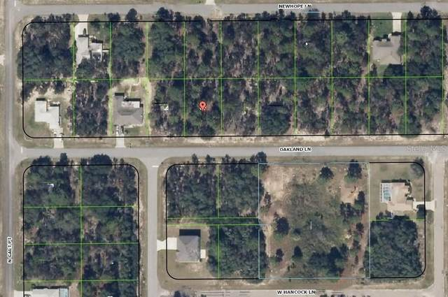 2443 W Oakland Lane, Citrus Springs, FL 34434 (MLS #H2203963) :: Premier Home Experts