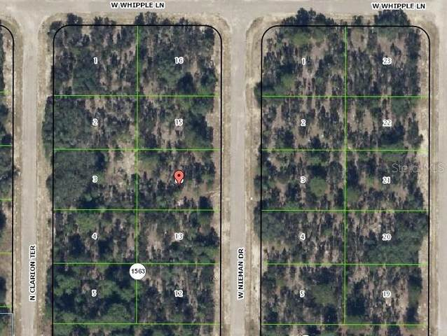 3572 W Nieman Drive, Citrus Springs, FL 34433 (MLS #H2203964) :: Burwell Real Estate