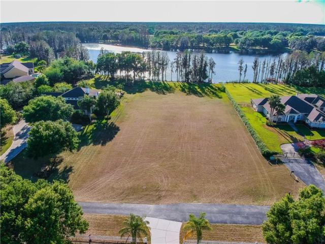 19708 Kell Estates Lane, Lutz, FL 33549 (MLS #H2204880) :: Griffin Group