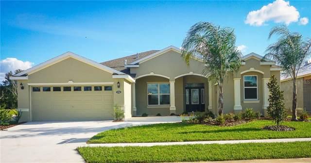 4702 Spring Grove Lane, Leesburg, FL 34748 (MLS #L4910225) :: Armel Real Estate