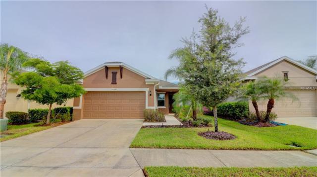25788 Grayton Avenue, Englewood, FL 34223 (MLS #N6102554) :: Medway Realty