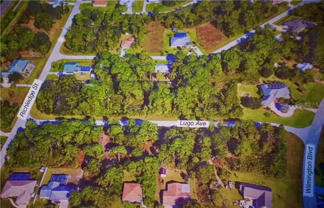 9056 Lugo Avenue, Englewood, FL 34224 (MLS #N6106962) :: The BRC Group, LLC