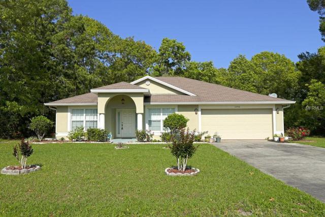 12958 SW 38TH Circle, Ocala, FL 34473 (MLS #O5562375) :: The Light Team