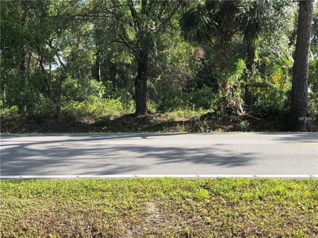 Cattle Drive Trail, Geneva, FL 32732 (MLS #O5705107) :: The Duncan Duo Team