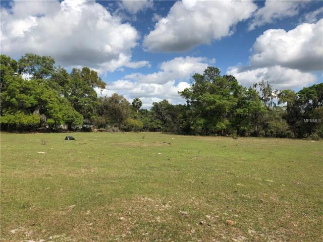 0 Pitt Road Lot 3, Plant City, FL 33567 (MLS #O5709699) :: The Lockhart Team